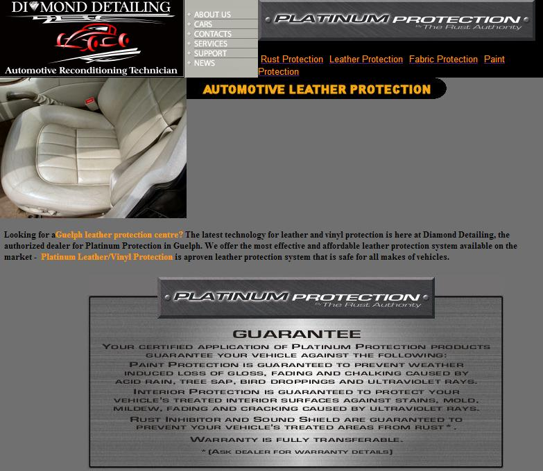 DD Auto leather protection